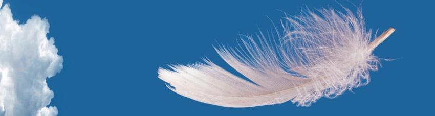 Arcangeli e libertà